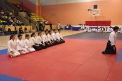 Martial Arts Festival 1