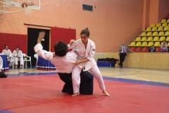 Martial Arts Festival 2