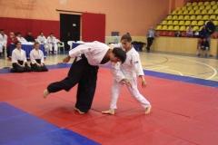 Martial Arts Festival 5