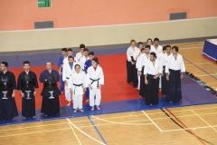 Martial Arts Festival 6