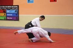 Martial Arts Festival 7