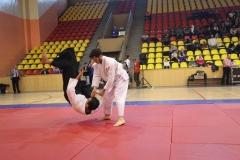 Martial Arts Festival 9