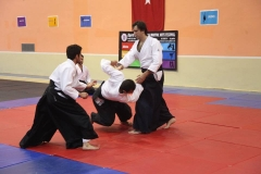 Martial Arts Festival 10