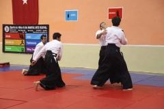 Martial Arts Festival 11