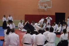Bilkent-Aikido-Semineri_1