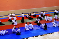 Bilkent-Aikido-Semineri_19