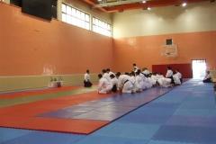 Bilkent-Aikido-Semineri_7